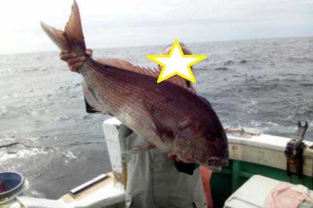 神津島は船釣りもオススメ